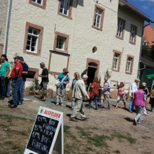 Ambiente - Konradsdorf Hoffest 2015