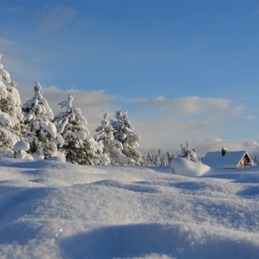 Wir machen Winterurlaub!